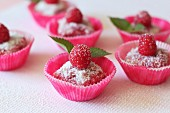 Raspberry and sponge squares with grated coconut