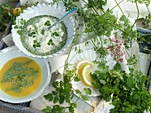 Chervil and two types of chervil soup