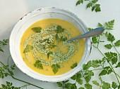 Bowl of chervil soup with cream chervil pesto
