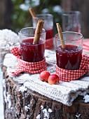 Heisser Apfel-Holunder Punsch mit Zimtstangen in Gläsern