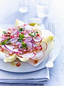 Chicory salad with radishes and pomegranate seeds