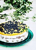 Mousse torte with blueberries