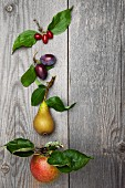 Wild fruit from trees in a meadow, on a wooden surface: plums, cornel cherries, a pear and an apple, each with stalk and leaves