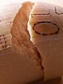 Hard cheese (close-up)