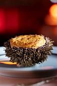 Sea urchin soufflé