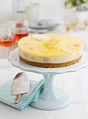 Lemon and blueberry cheesecake on a cake stand
