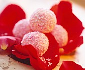 Coconut truffles on red rose petals