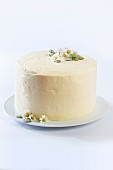 Chocolate cream layer cake with sugared daisies and mint