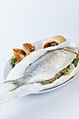 Gilt-head bream, cooked in baking parchment, with a ratatouille strudel