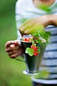 Girl holding mug with red currants twig