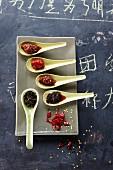 Fünf scharfe, chinesische Saucen