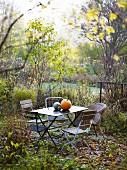 Garden chairs & pumpkins on table in autumnal garden