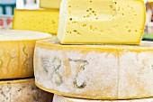 Typical cheese, Sappada, Veneto, Italy
