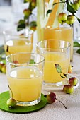Glasses of apple juice on a table with round felt coasters decorated with ornamental apples