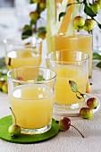 Apfelsaft in Gläsern auf Tisch mit runden Filzuntersetzern, dekoriert mit Zieräpfeln