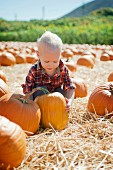 Male toddler lifting with pumpkins