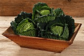 Savoy cabbage in a wooden bowl