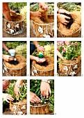 Einen Drahtkorb mit Kokosfasern auspolstern und mit Blumen bepflanzen