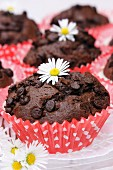 Chocolate muffins with daisies