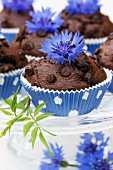 Chocolate muffins with cornflowers