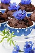 Schokoladenmuffins mit Kornblumen