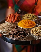A woman holding a tray of assorted spices from India