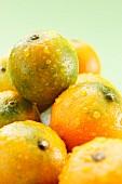 Wet mandarins
