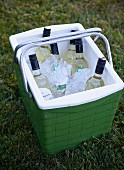 A Cooler with Wine Bottles in the Grass
