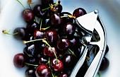 Cherries and a cherry stoner