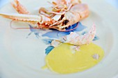 A langoustine with hollandaise sauce