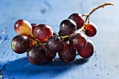 Red wine grapes on a blue wooden tabletop