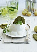 Coconut pudding with woodruff biscuits