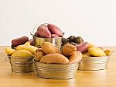 Verschiedene Arten von Fingerling-Kartoffeln in Zinkeimern