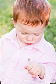 A Little Boy Holding a Dandelion
