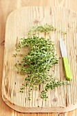 Fresh lemon thyme on a chopping board with a knife