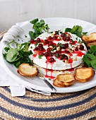 Brie and cranberry cheesecake with toast and cranberry coulis