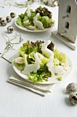 A mixed leaf salad with rabbit-shaped radishes and quails eggs