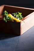 Pasta and fresh marjoram in a wooden box