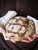 Round mixed rye-wheat homemade sourdough bread.