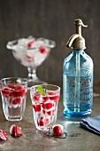 Raspberry drinks
