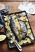Baked trout with potatoes and lemons