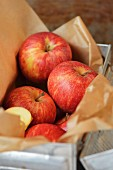red apples wrapped in brown paper in a vintage metal lunch box