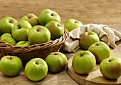 Lots of green Bramley apples, some in a basket