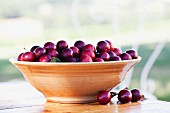 Lots of cherry plums in a bowl on a table in the garden
