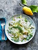 Fenchelsalat mit Radieschen und Zitrone