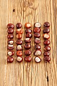 Five rows of conkers on wooden surface