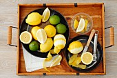 Lemons and limes (whole, cut in half, wedges and lemon peel)