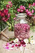 Getrocknete Rosenblütenblätter in einem Aufbewahrungsglas