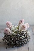 Hyacinth and allium flowers in basket of pussy willow catkins