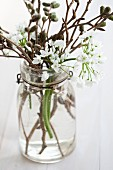 Swing-top preserving jar filled with alliums and alder twigs